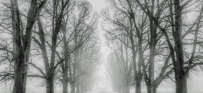Aller courir malgré hiver @manivaljulien