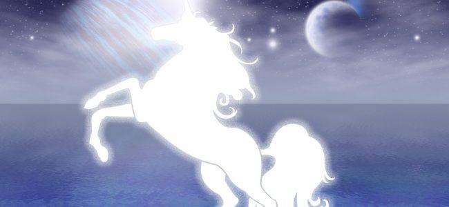 licorne blanche planète bleue